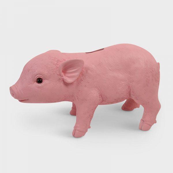 Coinbank Pink