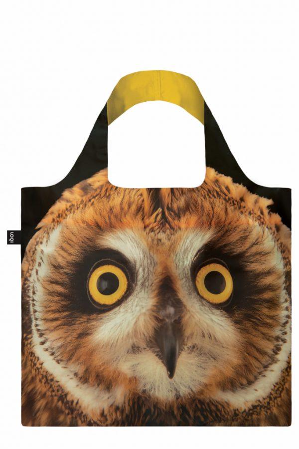 Loqi Owl